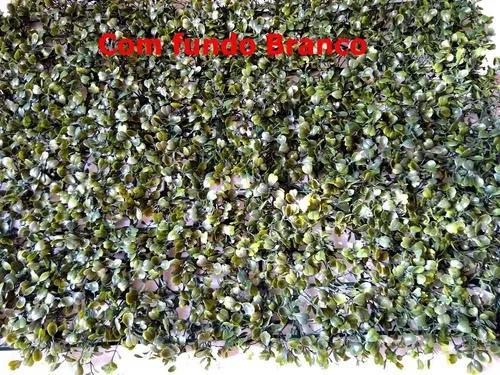 Placas de grama buchinho kit com 10 - frete grátis
