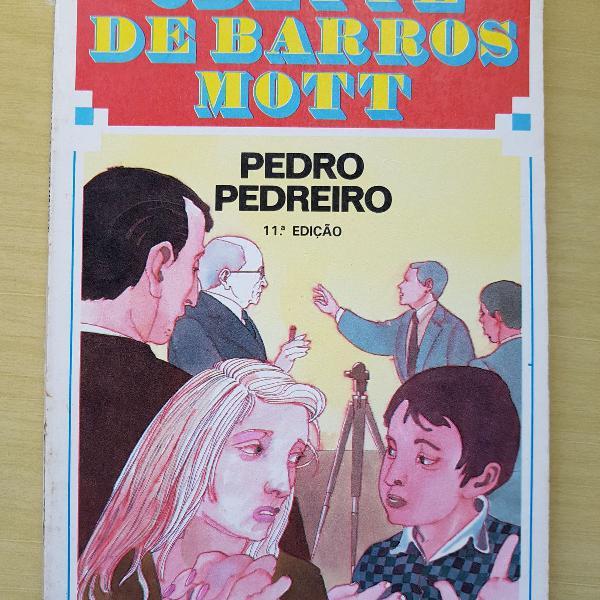 Pedro pedreiro