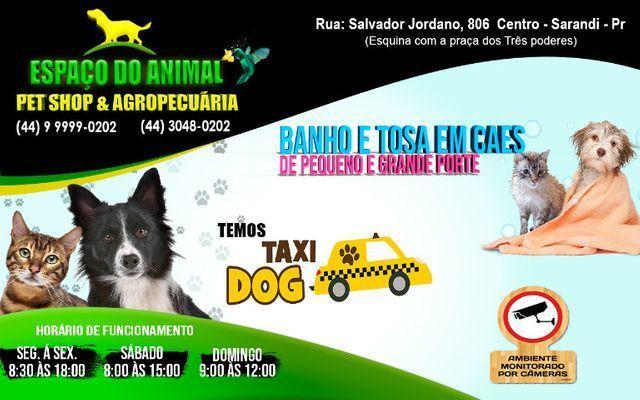 Bebedouro fonte p/ cães e gatos r$159,00 uni, areia de gato