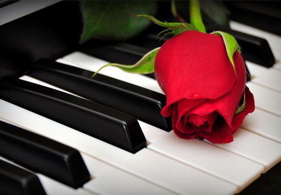 Aulas de piano ou teclado para todas as idades
