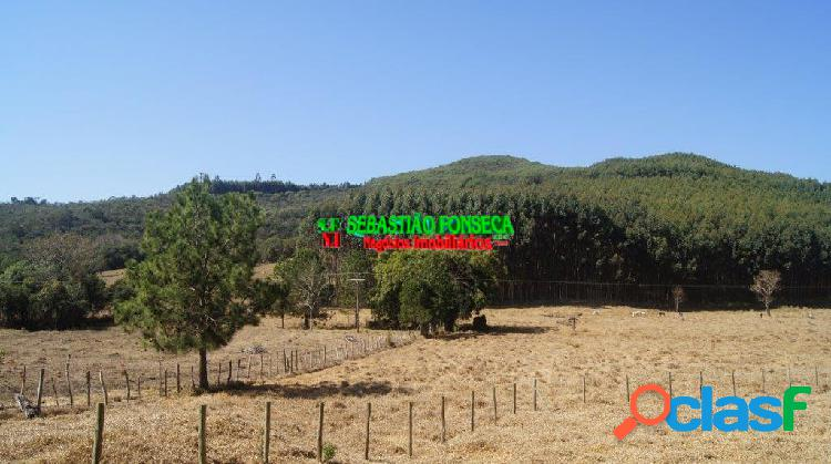 Bela fazenda com Cachoeiras, mata e eucalipto em Cunha 3