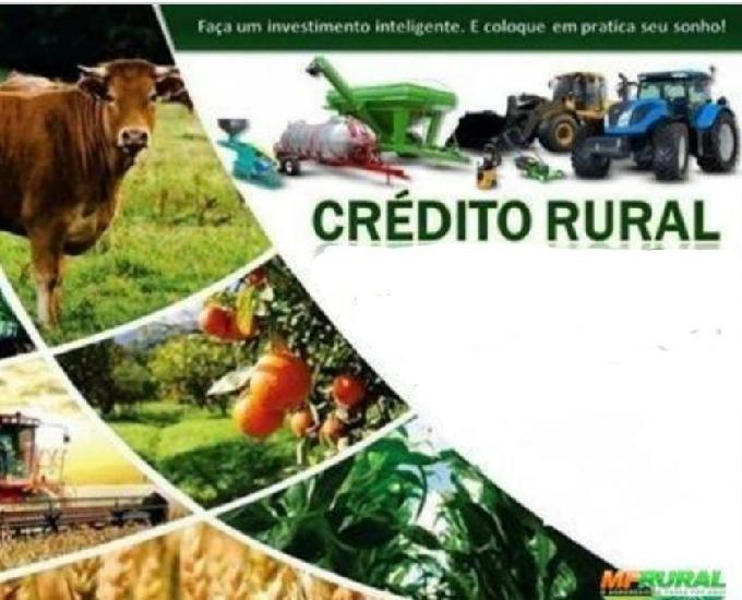 Capital de giro e crédito rural (gados, etc...)
