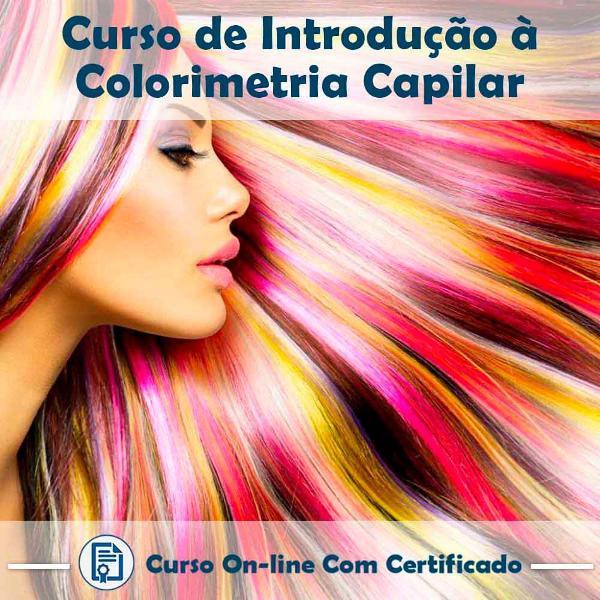 Curso online de introdução a colorimetria capilar com