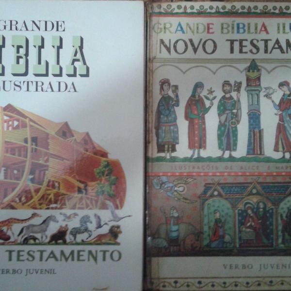 Grande bíblia ilustrada antigo e novo testamento - 2