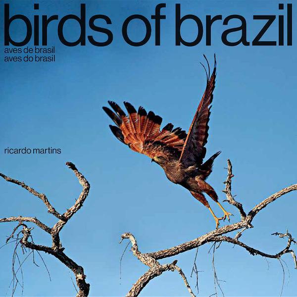 Livro birds of brazil - aves do brasil