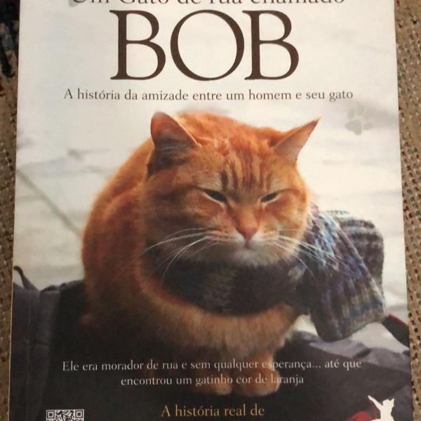 livro um gato de rua chamado bob; james bowen