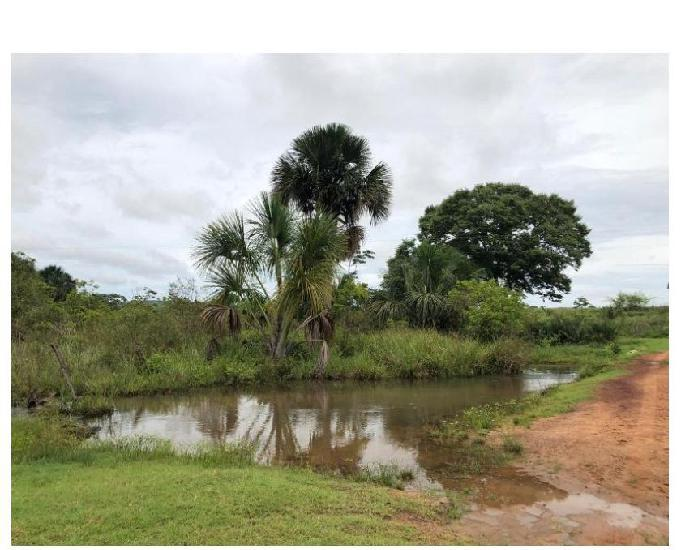 200 alq. cultura planas margeada por rio represas d grande p