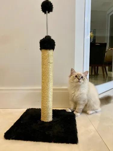 Brinquedo poste com mola g
