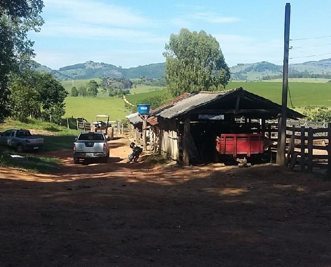 Fazenda 40 alqueires em Caldas