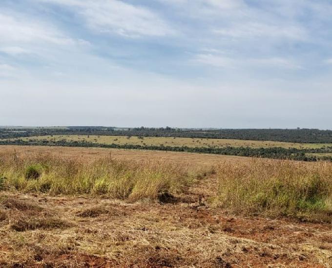 Fazenda avenda em uberlândia e rejiao