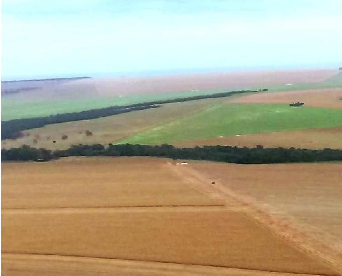 Excelente fazenda com 2.250 hectares região de sonora ms