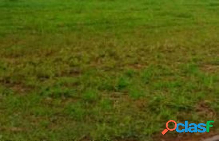 Terreno - venda - lencois paulista - sp - jardim itamaraty