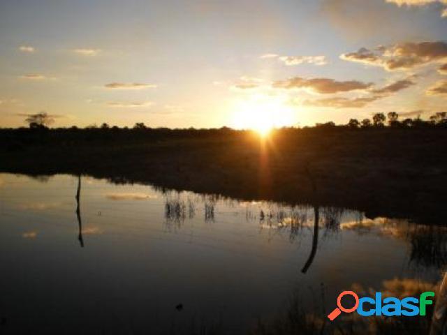 Fazenda - venda - rio do sono - to - rural