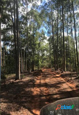 Fazenda 206 alqueires ideal para implantação de projetos de agroecologia