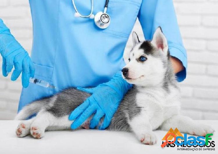 Mrs negócios - clinica veterinária + pet shop à venda em poa/rs