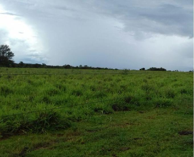 Excelente fazenda com 5.873 hectare na região de água boa