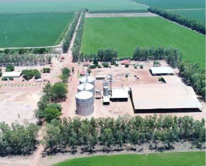 Fazenda no pi – stª filomena aptidão agricultura - 3105