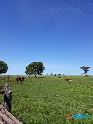 Fazenda - venda - jaraguari - ms - zona rural