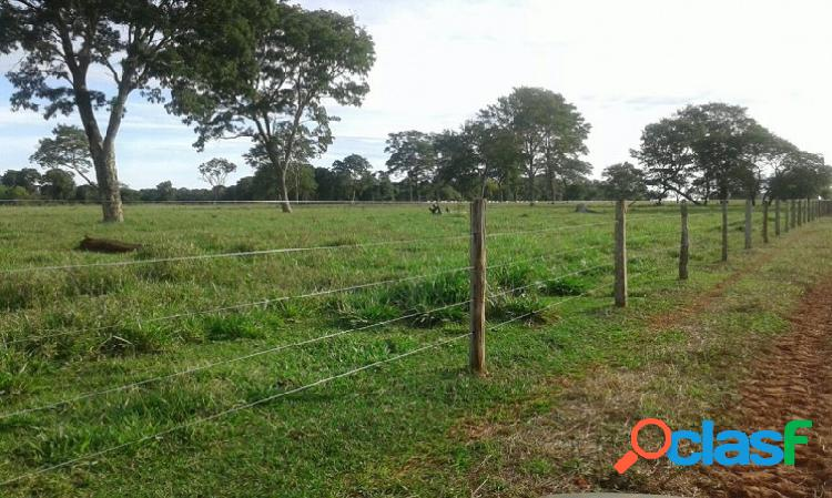 Fazenda - venda - terenos - ms - zona rural