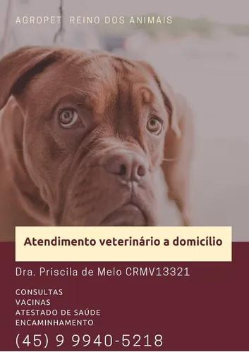 Atendimento veterinário a domicilio