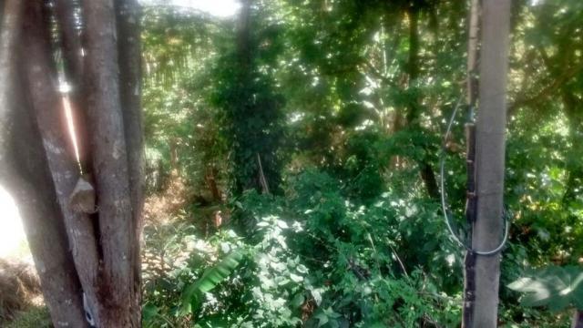 Terreno residencial à venda, jardim santo antônio da boa