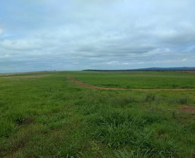 Oportunidade de fazenda com 13.800 hectares em nova mutum mt