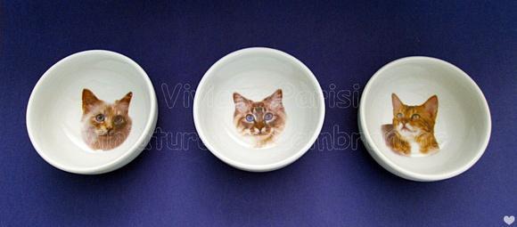 Comedouro de porcelana cat