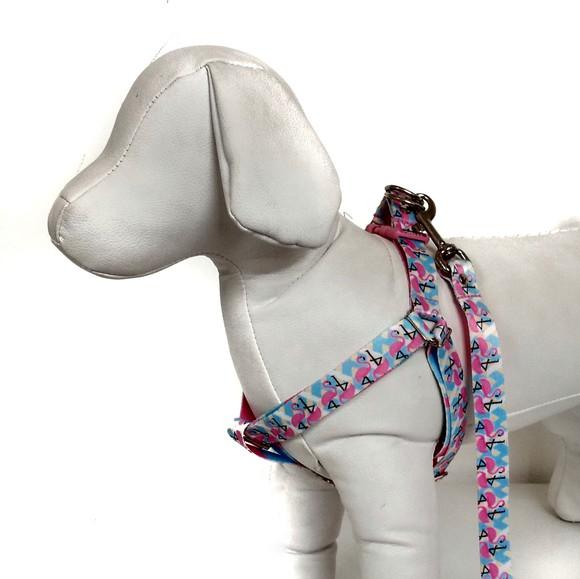 Peitoral e guia para cães de médio porte - modelo flamingo
