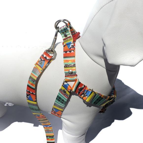 Peitoral para cachorros com guia - médio porte - afrika
