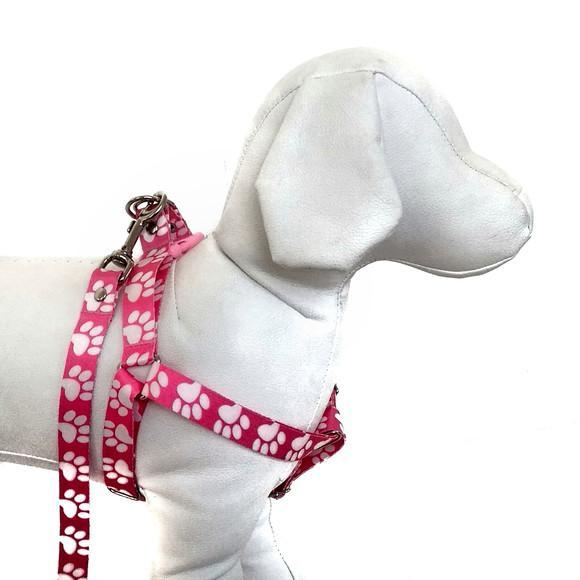 Peitoral para cachorros com guia - médio porte - patinhas