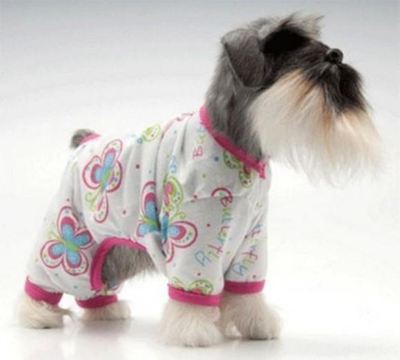 Pijama 4 patas em malha