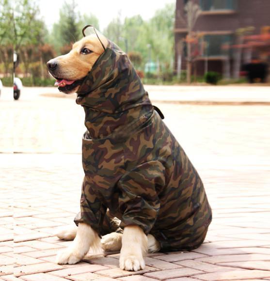 Roupa capa de chuva para cachorro grande