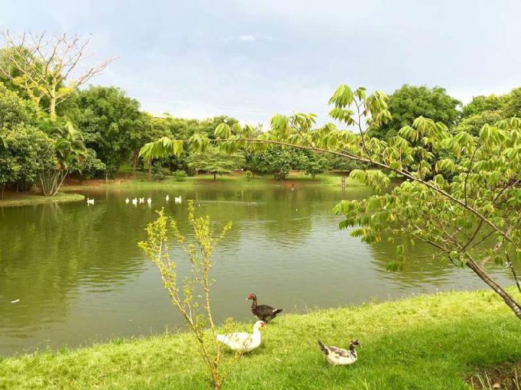 Casa de condomínio em maravilhoso parque a 40 min de São