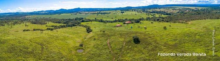 Fazenda divisa com vale das maceiras, 2km br 080
