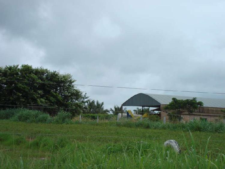 Região agro - imóvel comercial para venda tem 60 metros