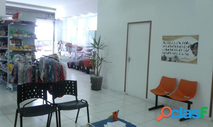 Pet shop e clinica veterinária Zona Sul 2