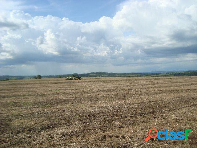 Fazenda em morrinhos com 494 hectares - terra de cultura