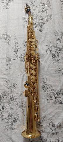Sax soprano waldman completão + case