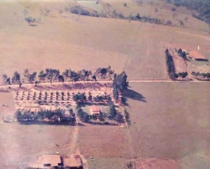 Rea ou sítio aptidão para gado e lavoura - 3023
