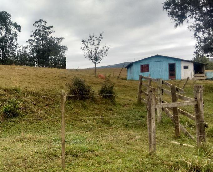 Sítio 4,1 hectares - vila nova - glorinha - rs