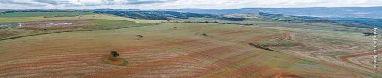 Fazenda, 1.720ha, divisa com aguas lindas de goias