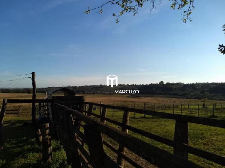 Fazenda/sítio/chácara/haras à venda no pains - santa