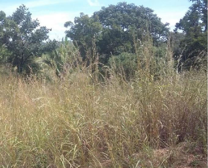 Vende Fazenda, Sitio, 10 Alq. em Mara Rosa R$ 560 Mil