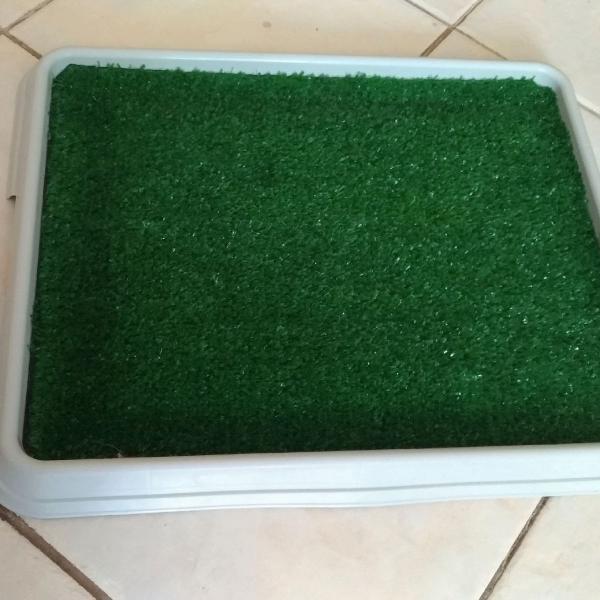 Banheiro higiênico de grama sintética para cães