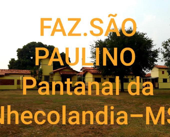 Faxineira p serviços gerais rural.