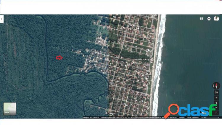 Terreno - venda - itapoá - sc - balneario rainha do mar