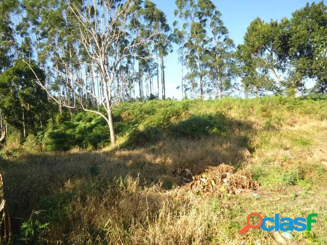 Terreno - venda - ibirama - sc - serra sao miguel