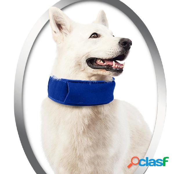 Cachorro pet summer cooling collar dog verão gelo