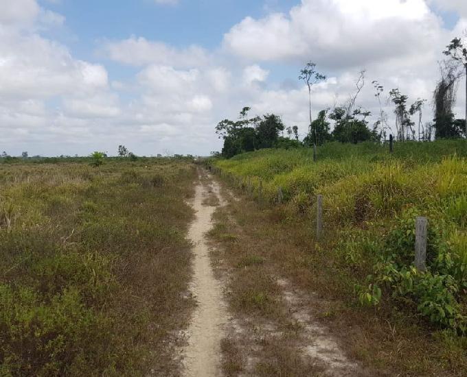 Vendo big fazenda de 29.641,3400 hectares