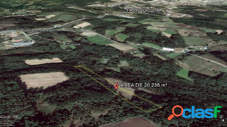Áreas de terras - venda - farroupilha - rs - ipanema